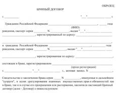 Содержание и условия брачного договора
