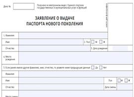 Как оформить и получить загранпаспорт через МФЦ