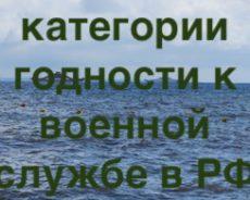 Какие категории годности к военной службе существуют в России
